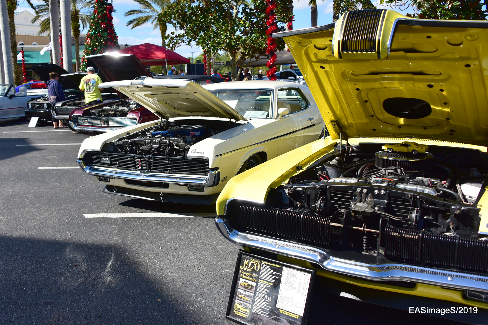 Mustang & Ford Show