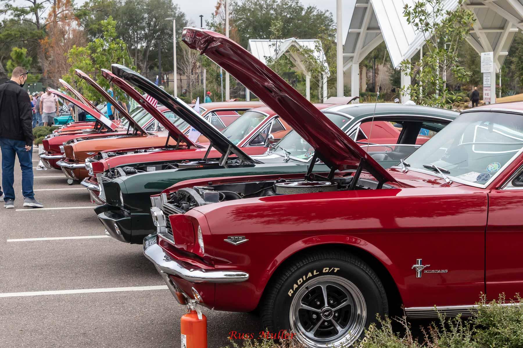 Mustang Roundup 2021