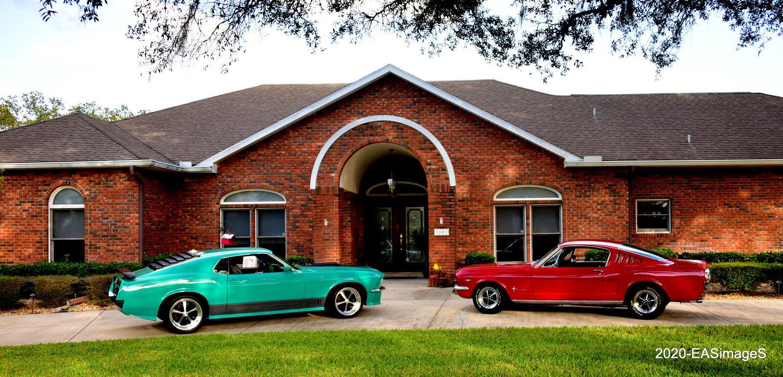 Pair Mustangs
